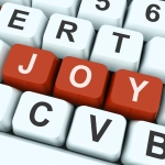Joy Key Meaning Enjoy Fun Or Happy